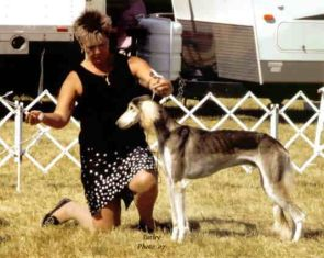 Canadian National was held in conjunction with the Kilbride dog shows